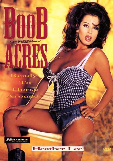 Boob Dvd 90