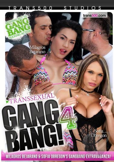 Transsexual Gang Bang 103