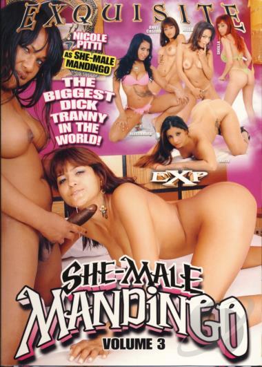 Shemale Mandingo 11